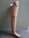 kaki palsu fiber